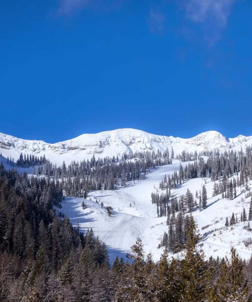 Fernie Mountain House Rear View